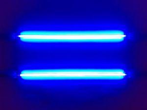 l43-neon-121205122629_big